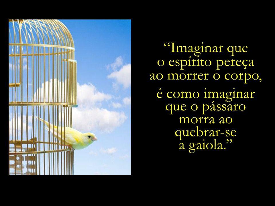 Imaginar que o espírito pereça. ao morrer o corpo, é como imaginar. que o pássaro. morra ao. quebrar-se.