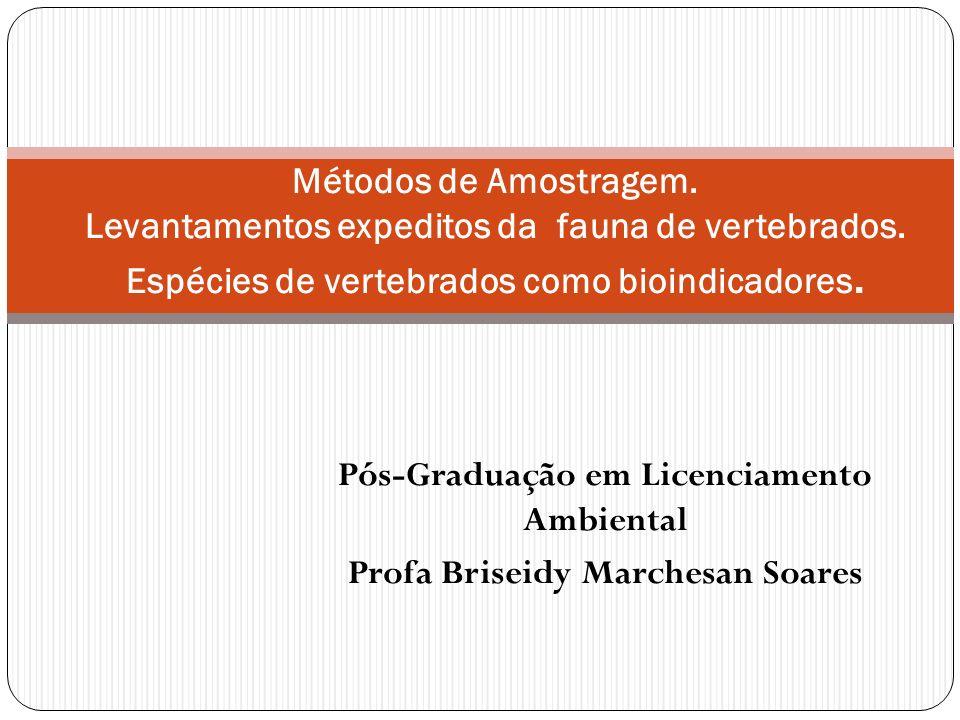 Pós-Graduação em Licenciamento Ambiental