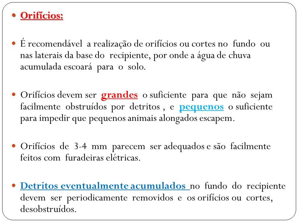 Orifícios: