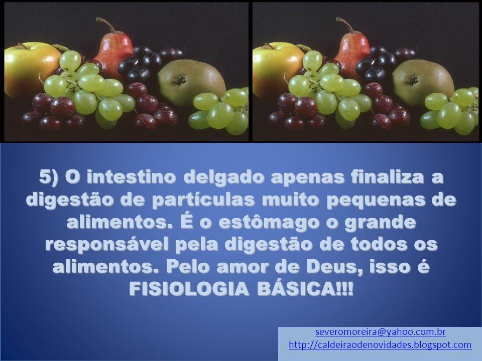 5) O intestino delgado apenas finaliza a digestão de partículas muito pequenas de alimentos. É o estômago o grande responsável pela digestão de todos os alimentos. Pelo amor de Deus, isso é FISIOLOGIA BÁSICA!!!