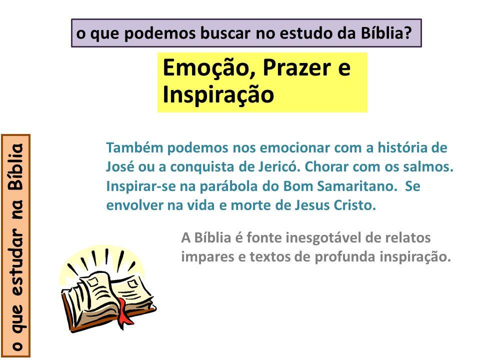 Emoção, Prazer e Inspiração o que podemos buscar no estudo da Bíblia