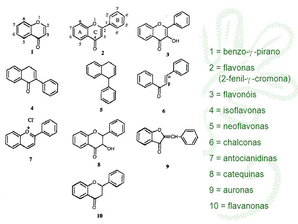 1 = benzo-g -pirano 2 = flavonas (2-fenil-g -cromona) 3 = flavonóis. 4 = isoflavonas.