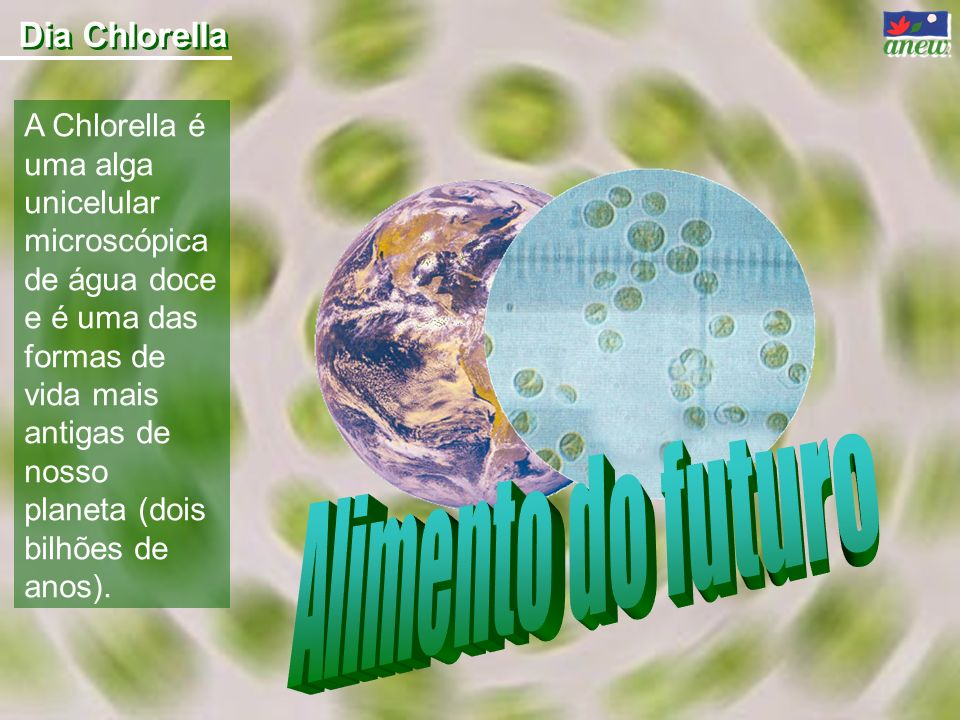 Alimento do futuro Dia Chlorella