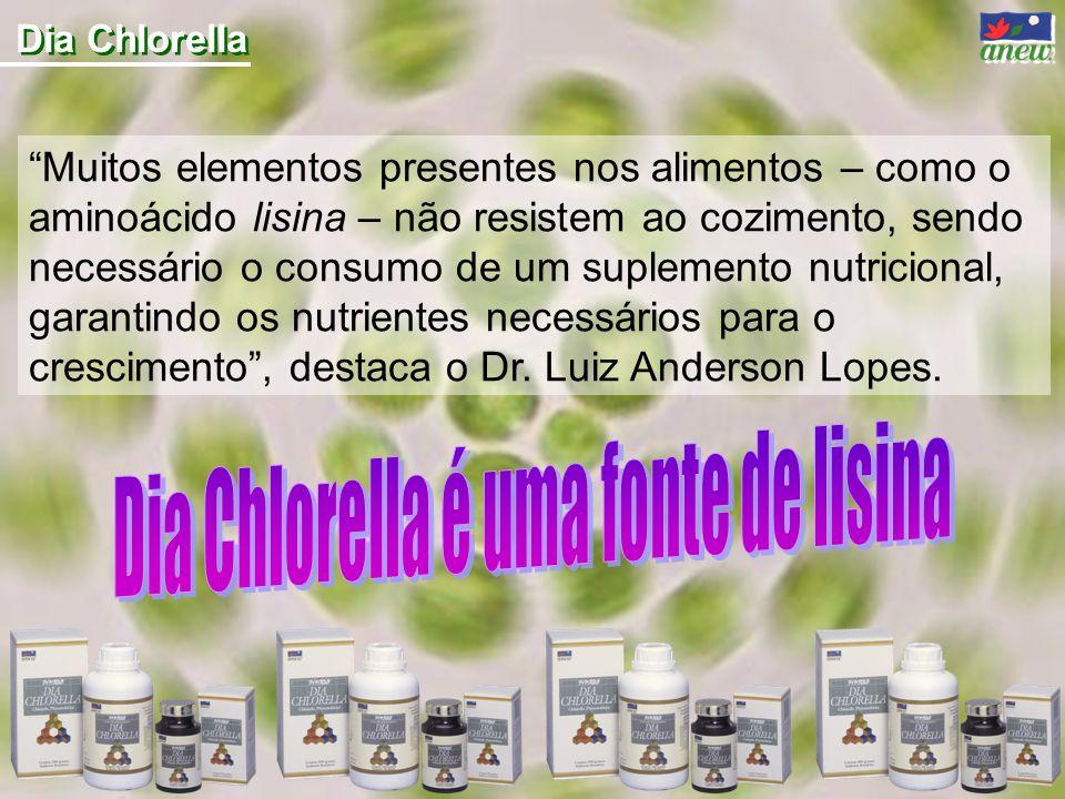 Dia Chlorella é uma fonte de lisina