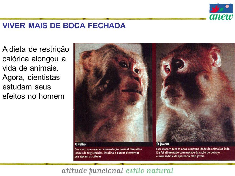 VIVER MAIS DE BOCA FECHADA