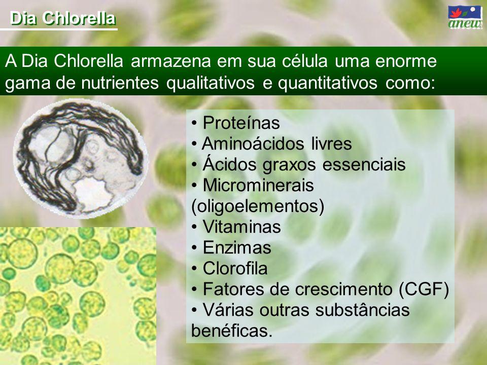 Ácidos graxos essenciais Microminerais (oligoelementos) Vitaminas