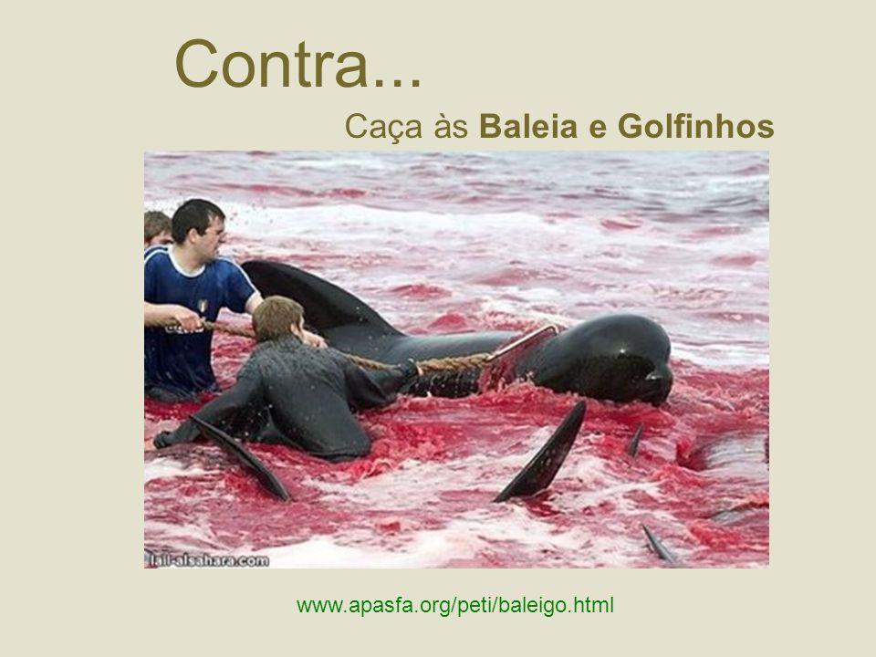 Contra... Caça às Baleia e Golfinhos www.apasfa.org/peti/baleigo.html