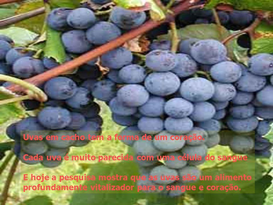 Uvas em cacho tem a forma de um coração.