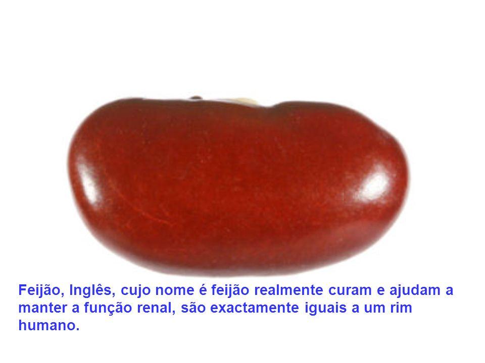 Feijão, Inglês, cujo nome é feijão realmente curam e ajudam a manter a função renal, são exactamente iguais a um rim humano.