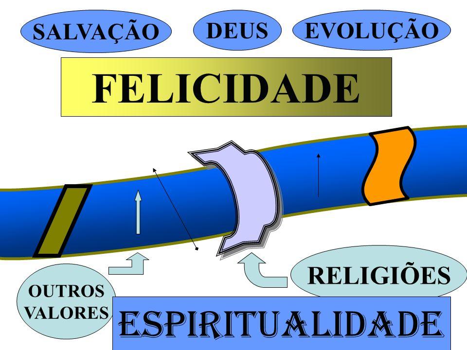 FELICIDADE ESPIRITUALIDADE RELIGIÕES SALVAÇÃO DEUS EVOLUÇÃO OUTROS