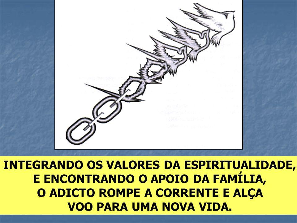 INTEGRANDO OS VALORES DA ESPIRITUALIDADE,