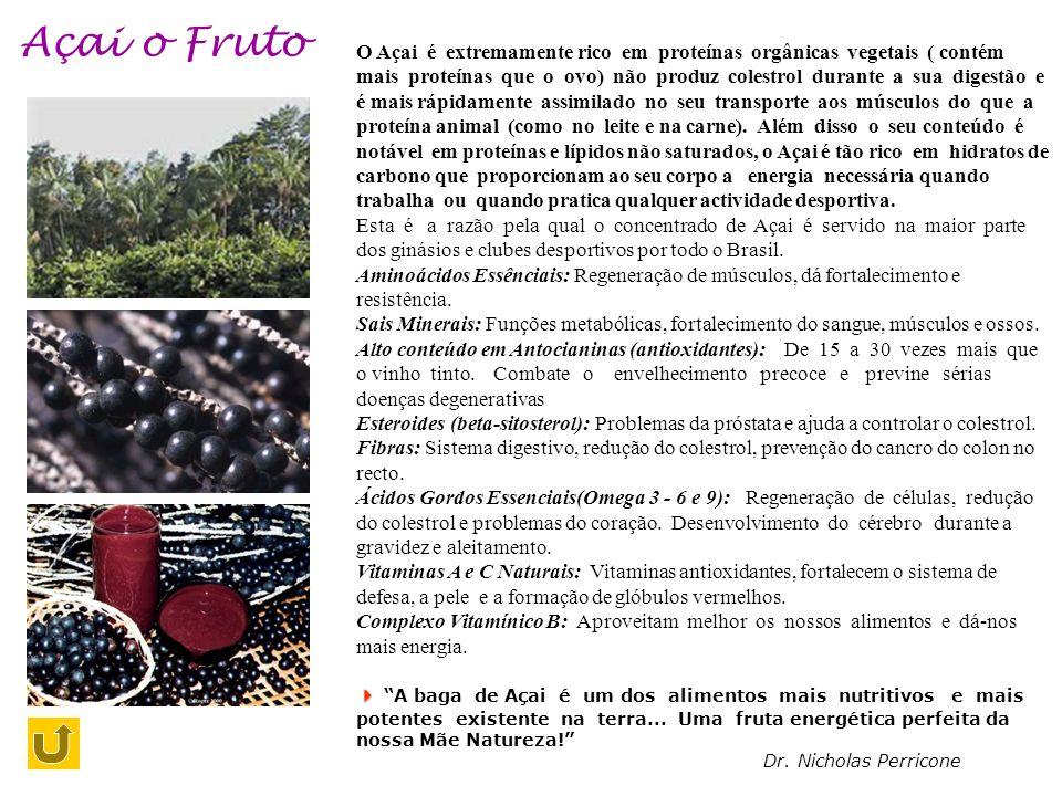 Açai o Fruto