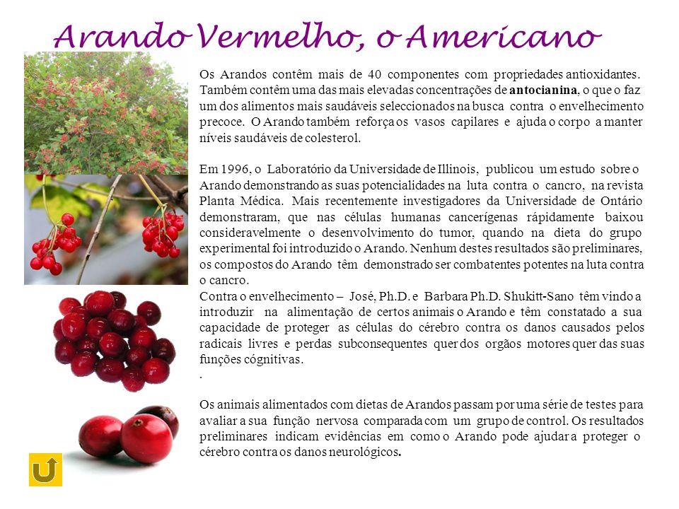 Arando Vermelho, o Americano