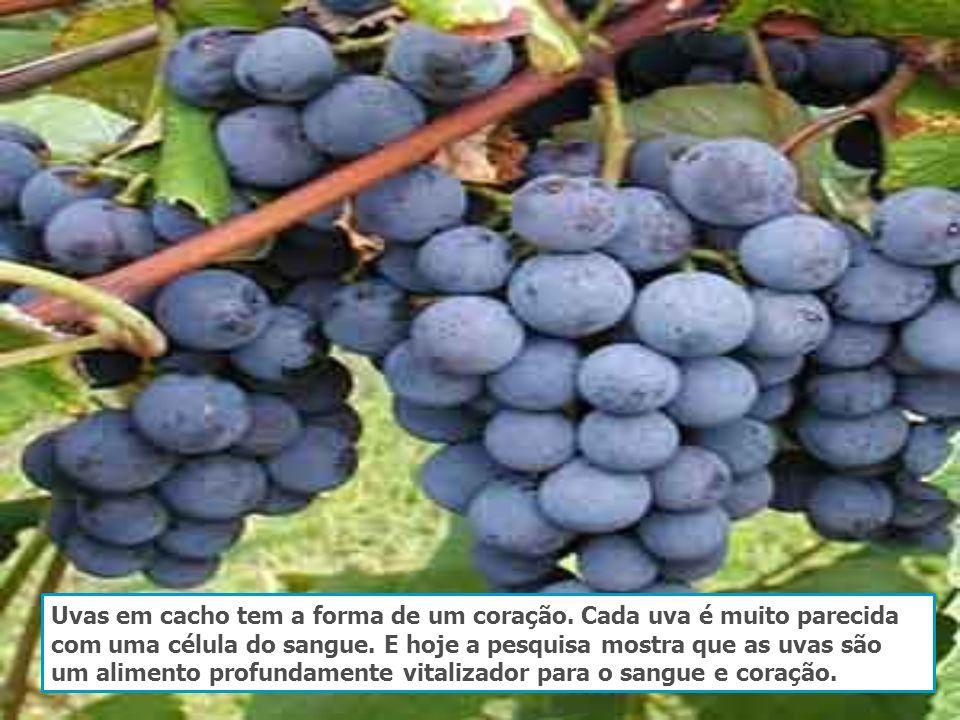 Uvas em cacho tem a forma de um coração