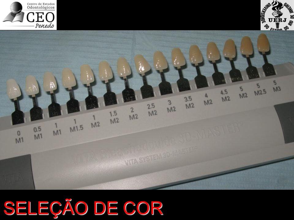 SELEÇÃO DE COR