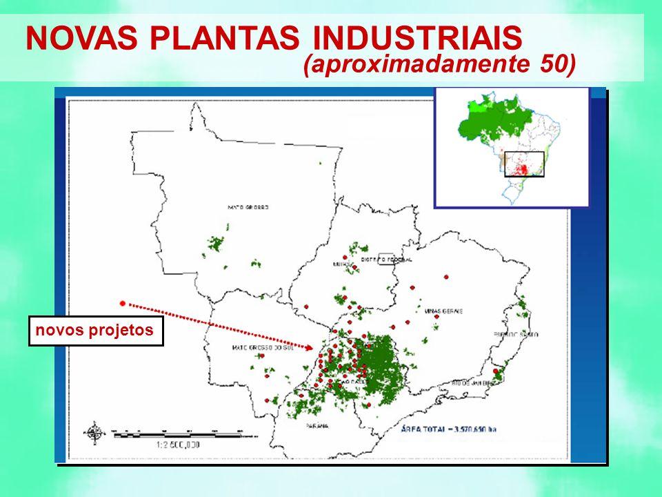 NOVAS PLANTAS INDUSTRIAIS