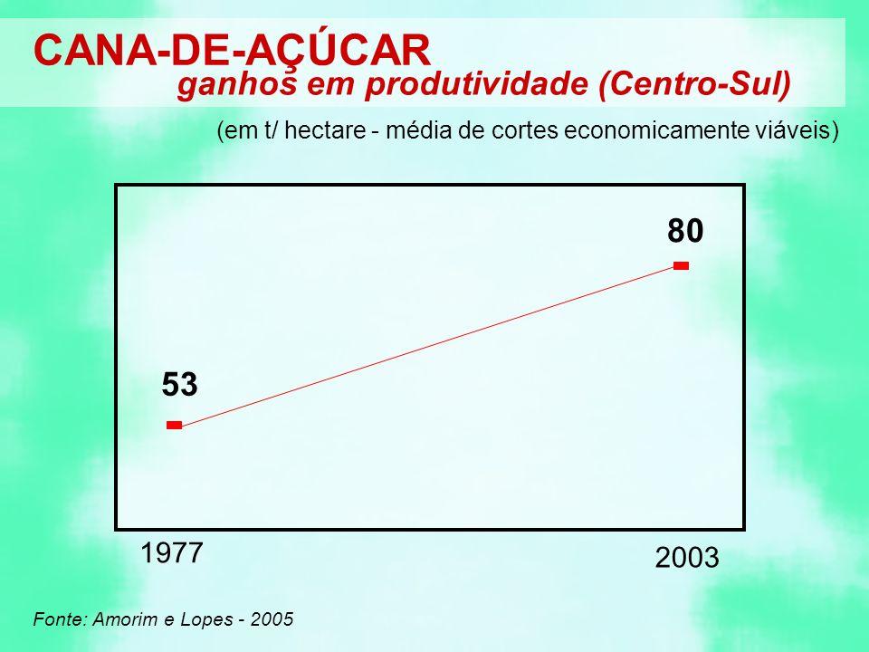 CANA-DE-AÇÚCAR ganhos em produtividade (Centro-Sul) 80 53 1977 2003