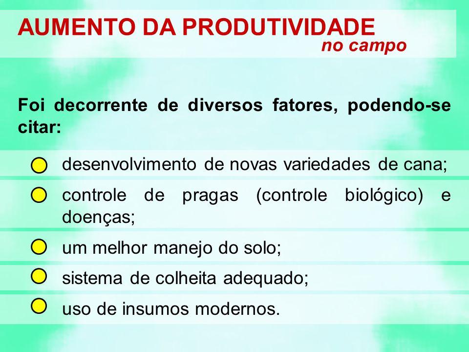 AUMENTO DA PRODUTIVIDADE