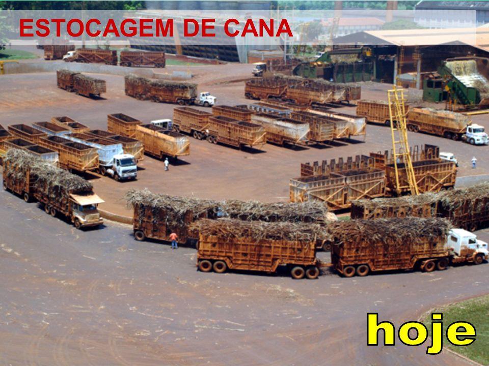 ESTOCAGEM DE CANA hoje