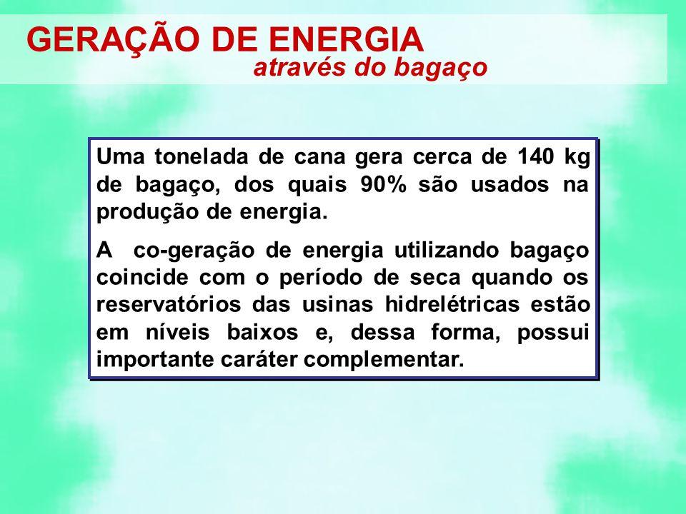 GERAÇÃO DE ENERGIA através do bagaço