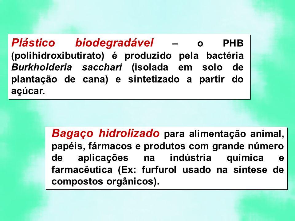 Plástico biodegradável – o PHB (polihidroxibutirato) é produzido pela bactéria Burkholderia sacchari (isolada em solo de plantação de cana) e sintetizado a partir do açúcar.