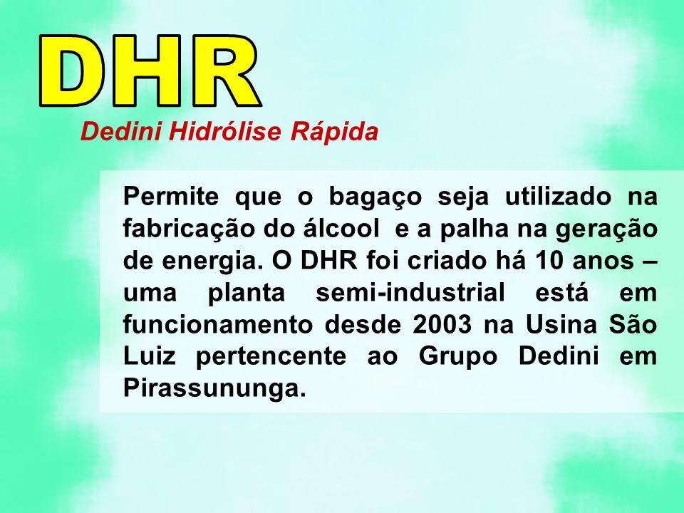 DHR Dedini Hidrólise Rápida
