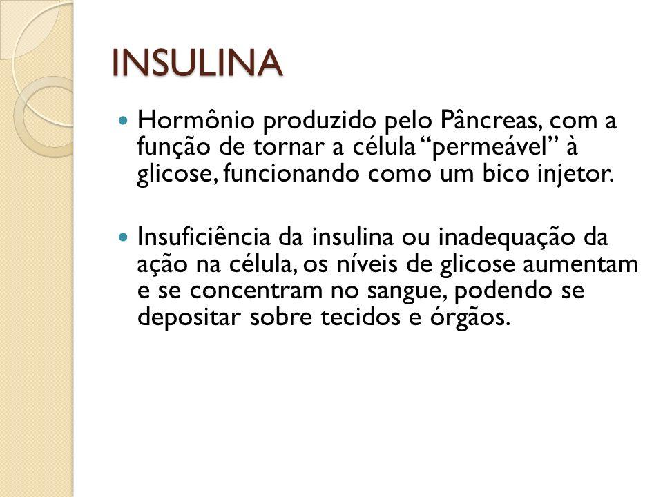INSULINA Hormônio produzido pelo Pâncreas, com a função de tornar a célula permeável à glicose, funcionando como um bico injetor.