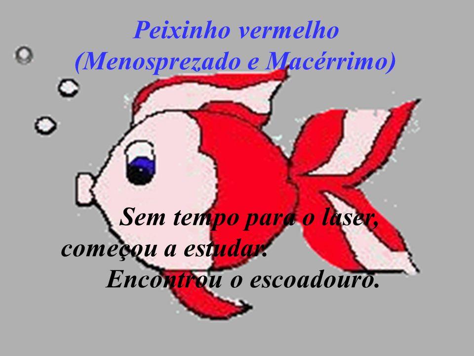 Peixinho vermelho (Menosprezado e Macérrimo) Sem tempo para o laser, começou a estudar.