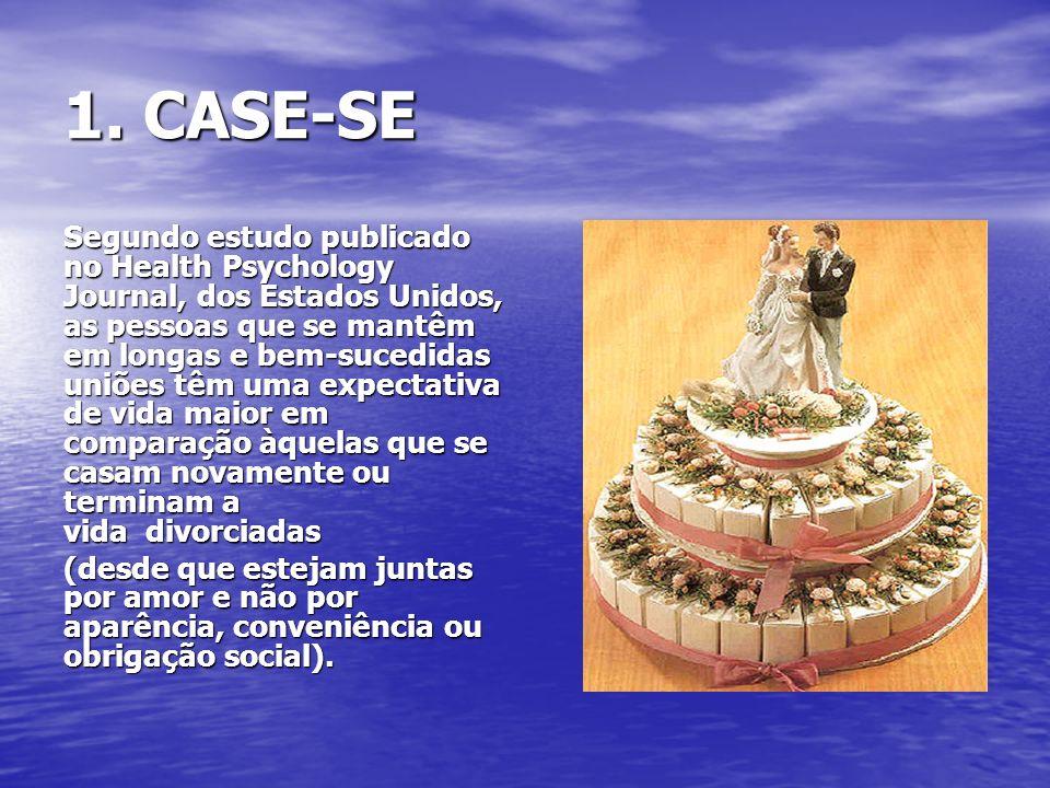1. CASE-SE