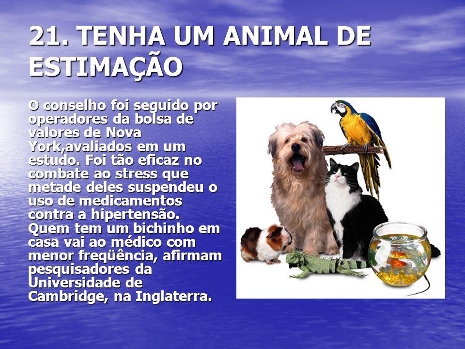 21. TENHA UM ANIMAL DE ESTIMAÇÃO