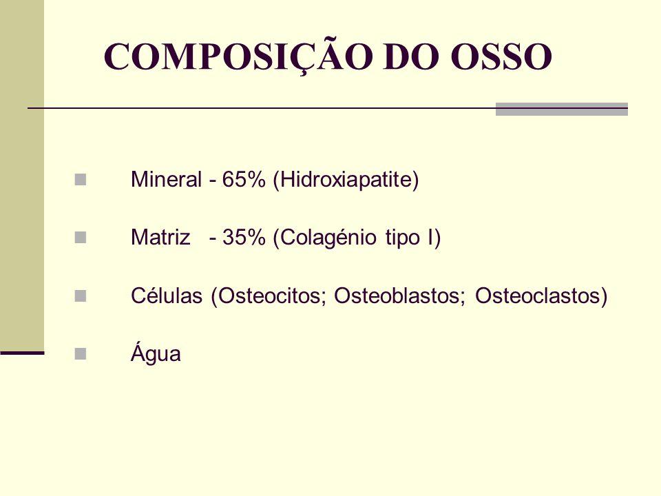 COMPOSIÇÃO DO OSSO Mineral - 65% (Hidroxiapatite)