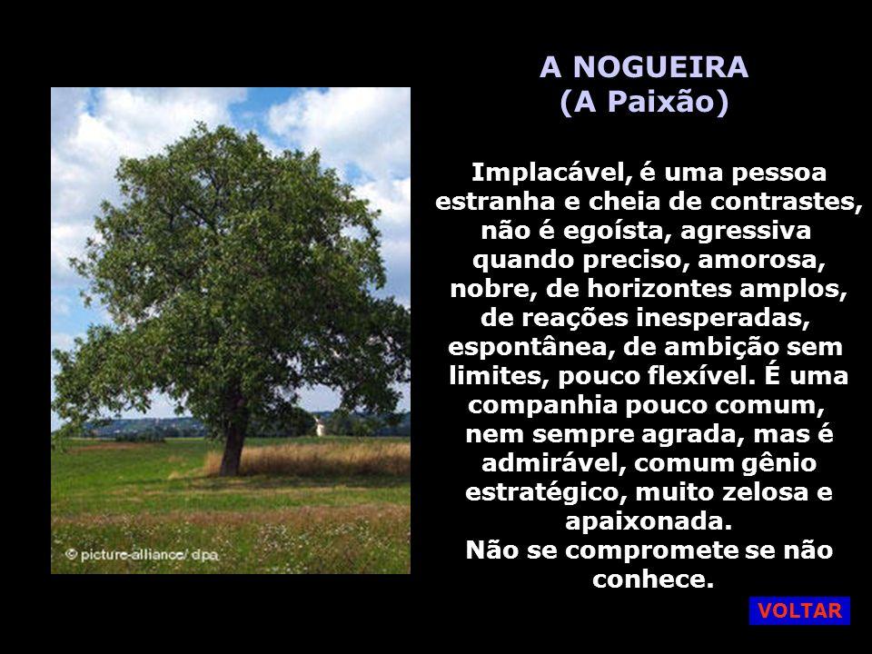 A NOGUEIRA (A Paixão) Implacável, é uma pessoa