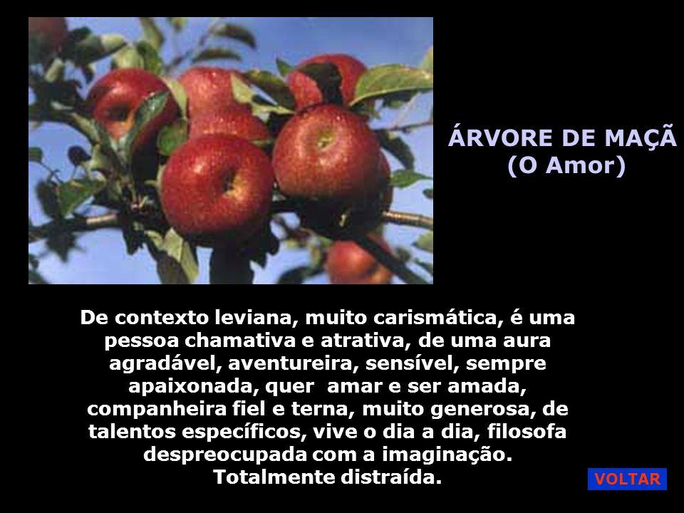 ÁRVORE DE MAÇÃ (O Amor)