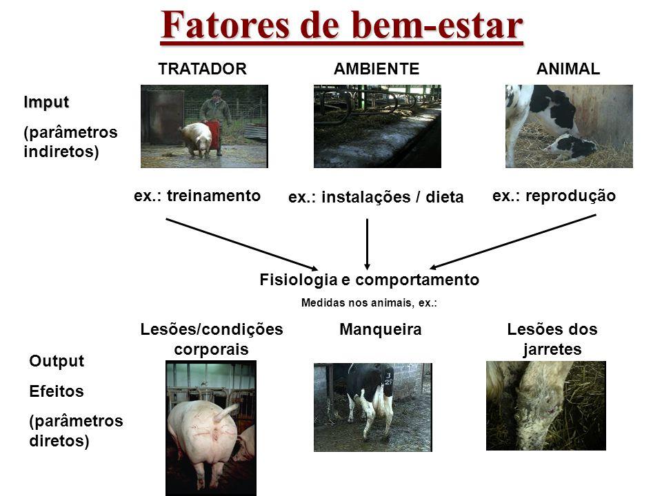 Fatores de bem-estar AMBIENTE ex.: instalações / dieta TRATADOR