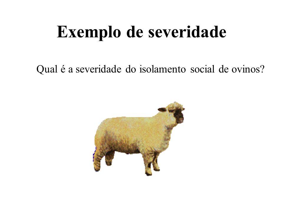 Qual é a severidade do isolamento social de ovinos