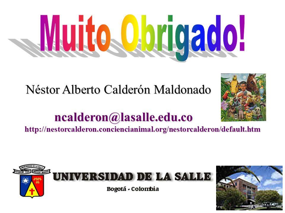 Muito Obrigado! Néstor Alberto Calderón Maldonado