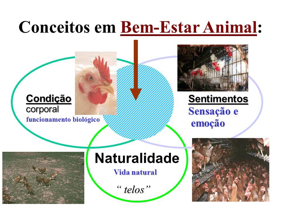 Conceitos em Bem-Estar Animal: