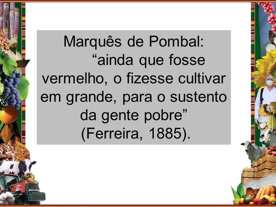 Marquês de Pombal: ainda que fosse vermelho, o fizesse cultivar em grande, para o sustento da gente pobre