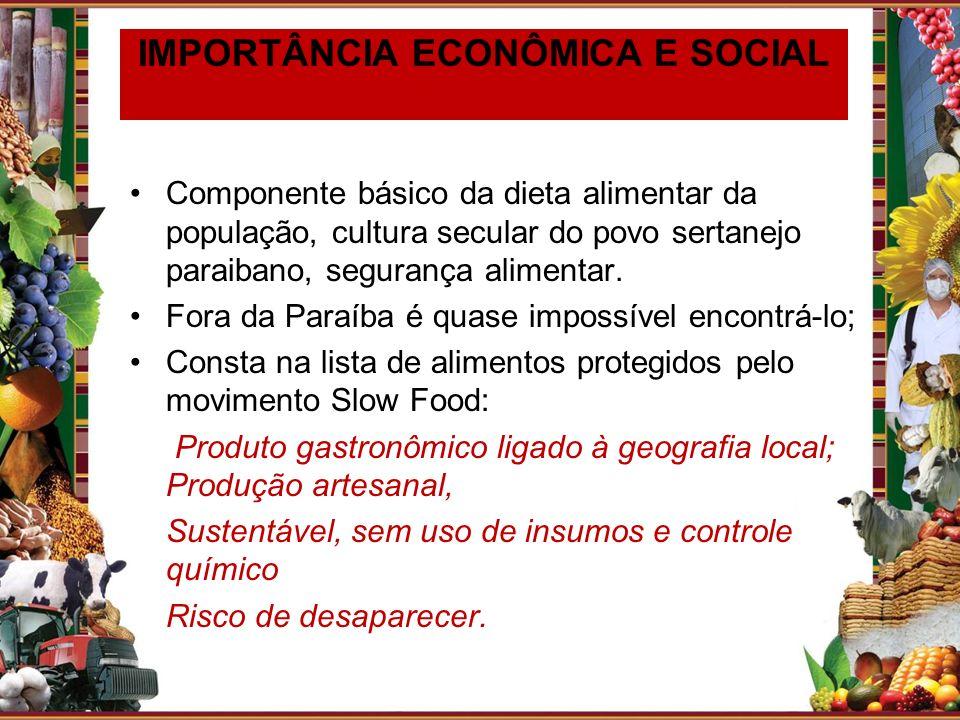 IMPORTÂNCIA ECONÔMICA E SOCIAL