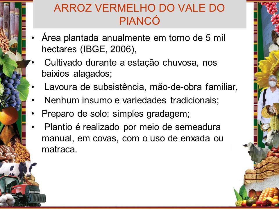 ARROZ VERMELHO DO VALE DO PIANCÓ
