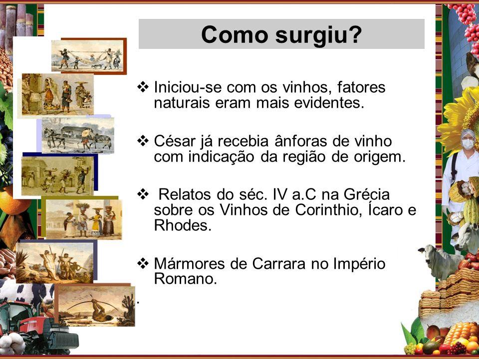 Como surgiu Iniciou-se com os vinhos, fatores naturais eram mais evidentes. César já recebia ânforas de vinho com indicação da região de origem.