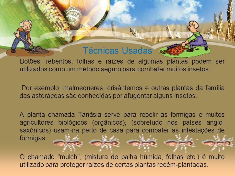 Técnicas Usadas Botões, rebentos, folhas e raízes de algumas plantas podem ser utilizados como um método seguro para combater muitos insetos.
