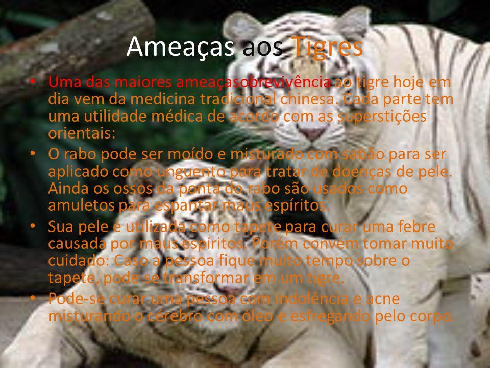 Ameaças aos Tigres