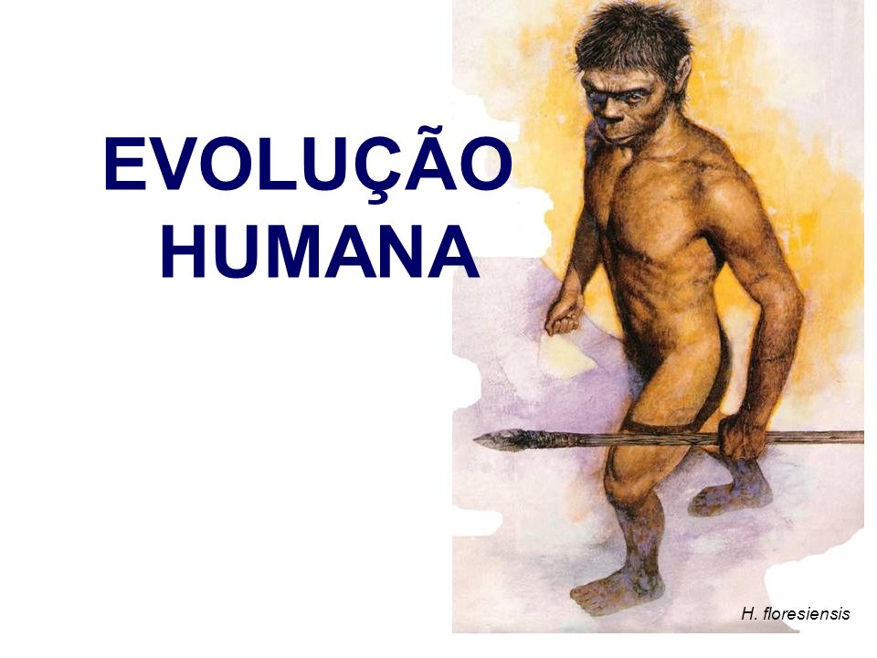 EVOLUÇÃO HUMANA H. floresiensis