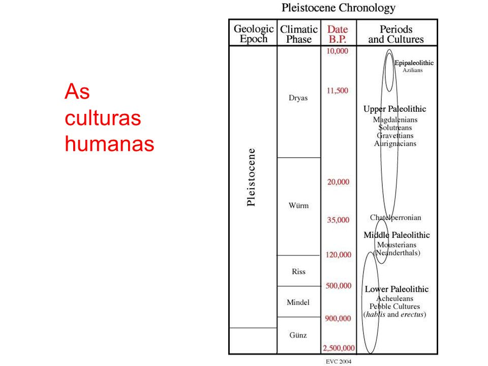 As culturas humanas