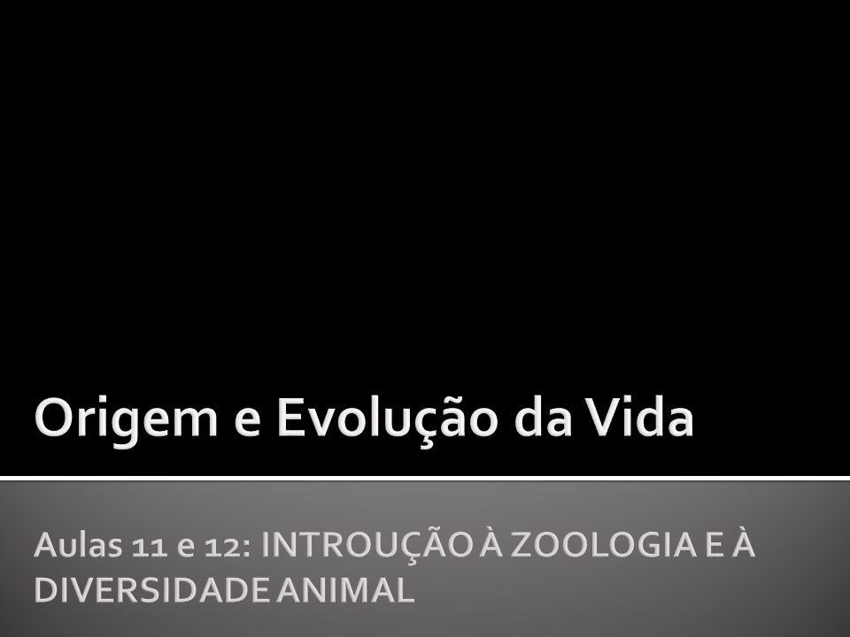 Origem e Evolução da Vida Aulas 11 e 12: INTROUÇÃO À ZOOLOGIA E À DIVERSIDADE ANIMAL
