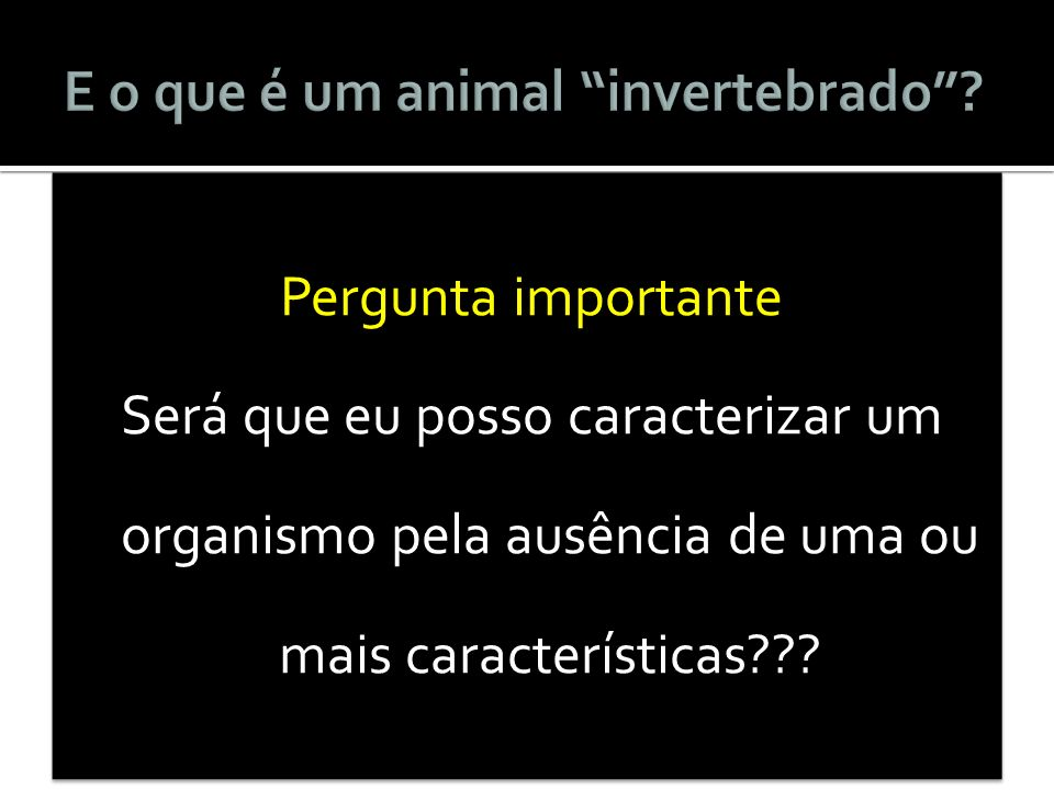 E o que é um animal invertebrado