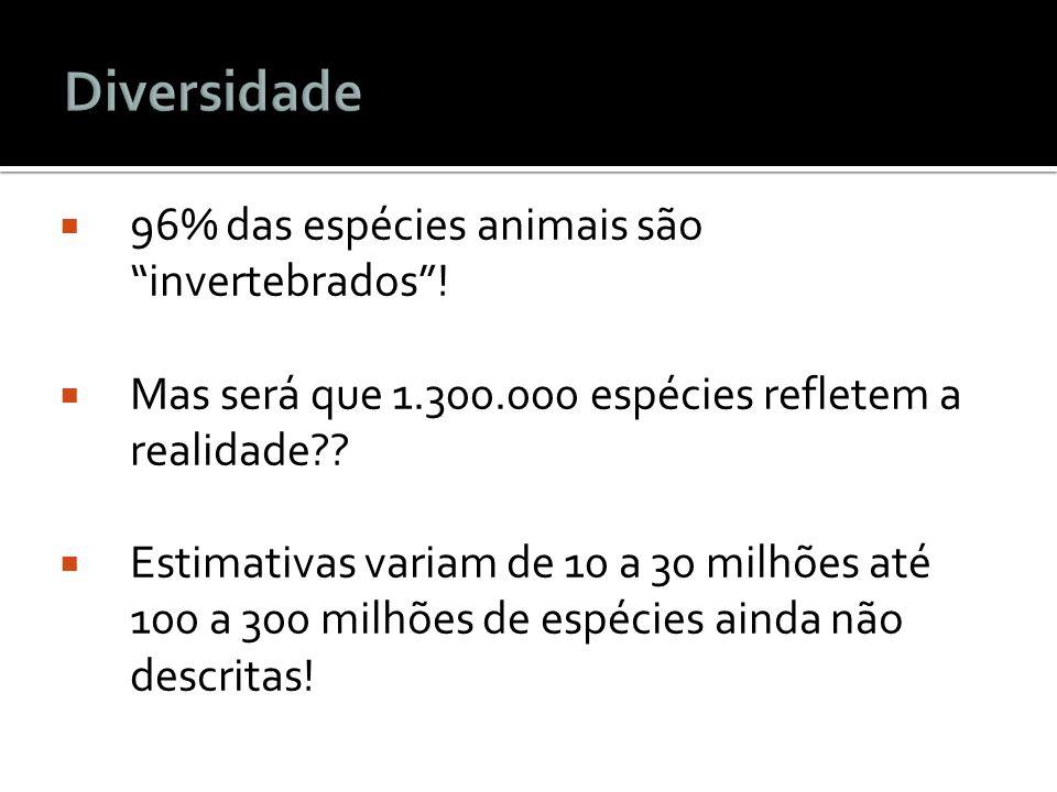 Diversidade 96% das espécies animais são invertebrados !