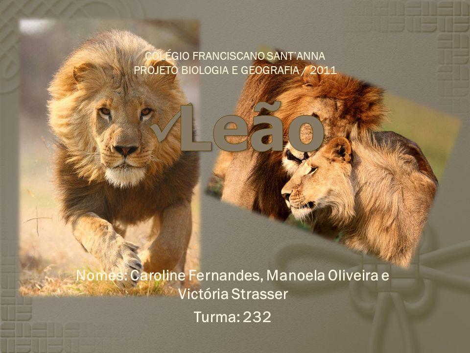 Nomes: Caroline Fernandes, Manoela Oliveira e Victória Strasser