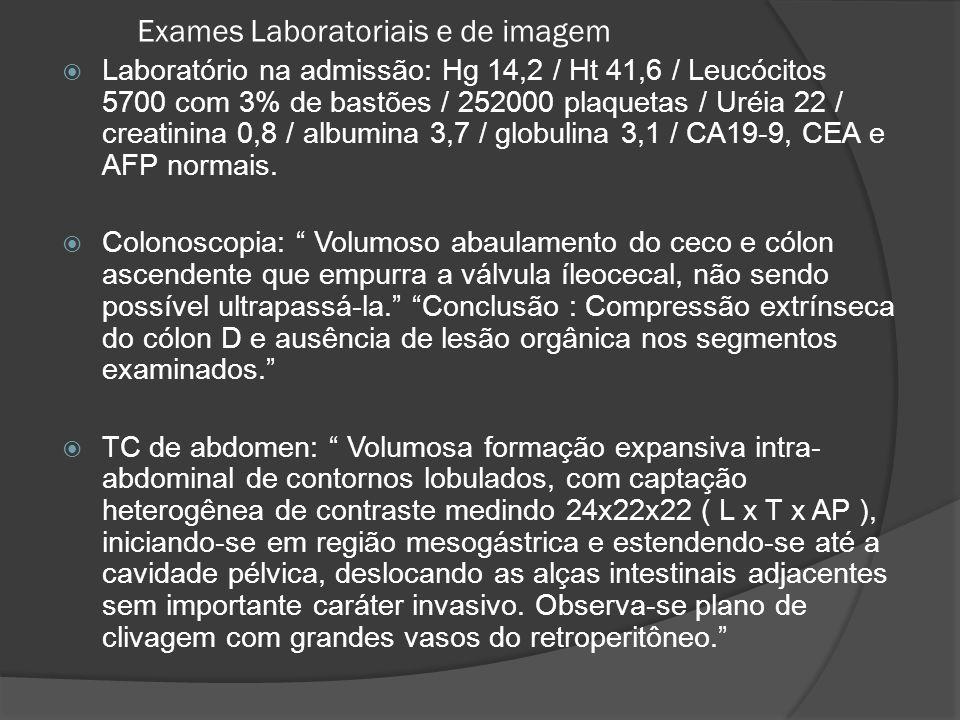 Exames Laboratoriais e de imagem